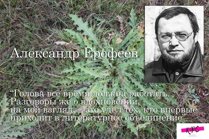 КФС. Александр Ерофеев