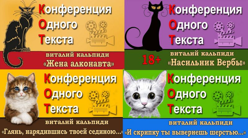 """О проекте Виталия Кальпиди """"КОТ"""""""