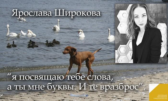 КФС. Ярослава Широкова