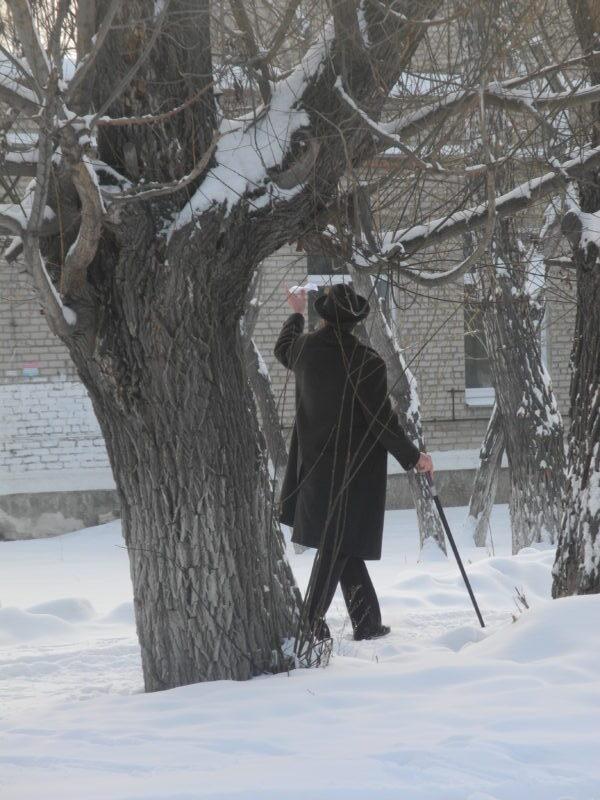 Чехов на улице Чехова