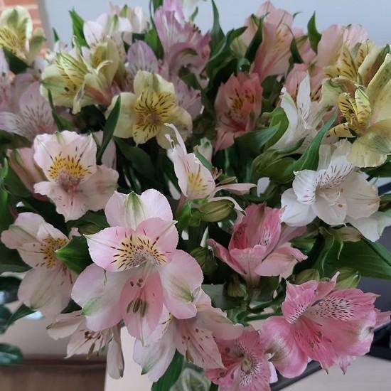 Букет из аленьких цветочков