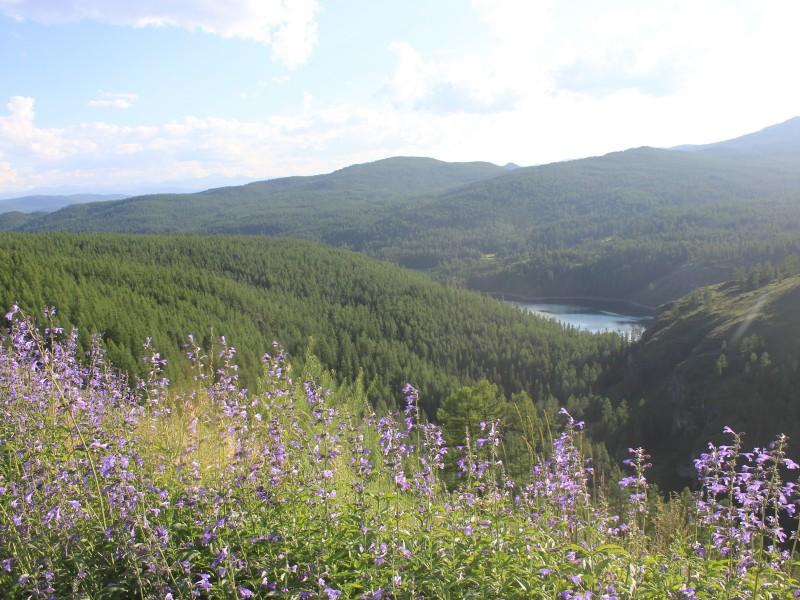 Алтай, Чуйский тракт